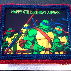 ninja turtles picture cake